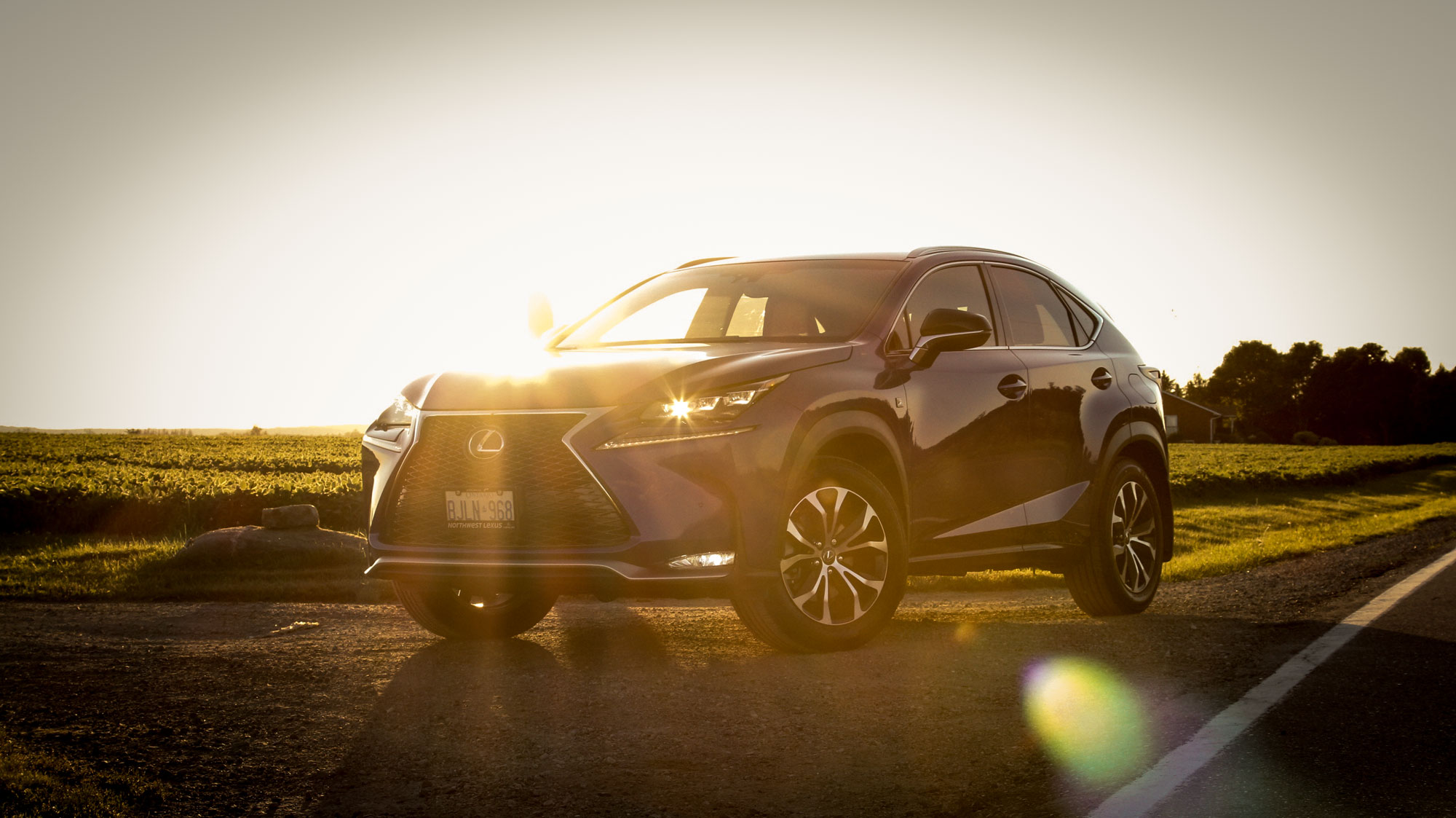 Lexus-NX-Review-let-the-light-in